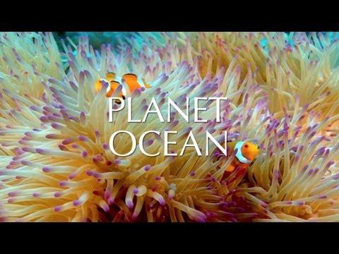 Documentary Planet Ocean