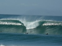 Surfing Playa Avellanas