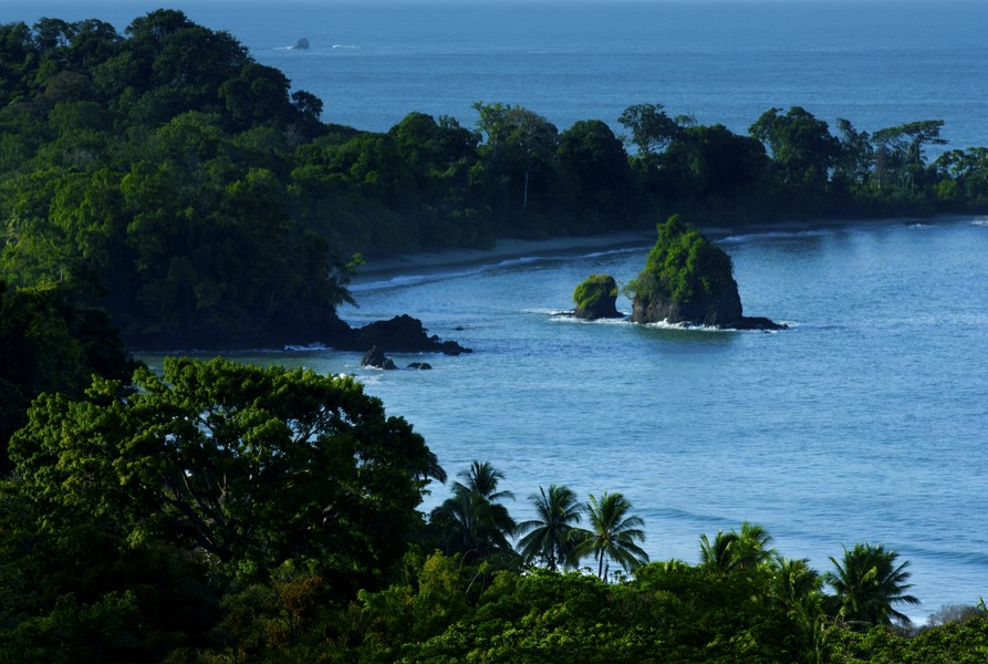 Surfing quepos manuel antonio costa rica for Rio vista fishing spots