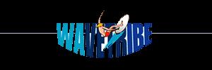 wav-tribe-airline-boardbag-fee-guide