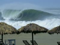 wave tribe oaxaca wave